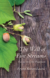 book_wellof5streams_small
