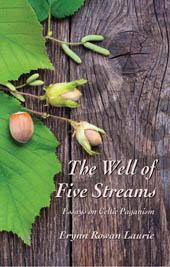 book_wellof5streams_small